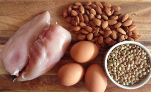 Why Consuming Protein Helps You Lose Fat